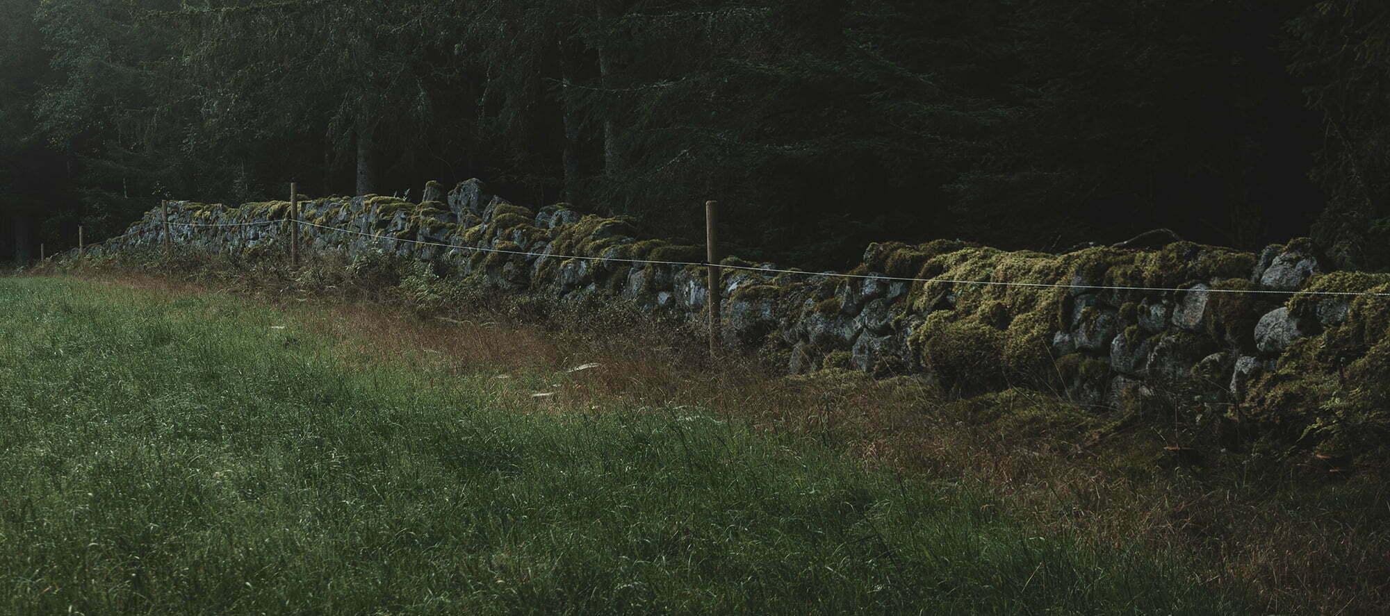 Stensträngarna i Gullaskruv